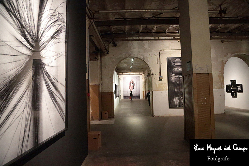 Fotógrafo profesional en Madrid LMC