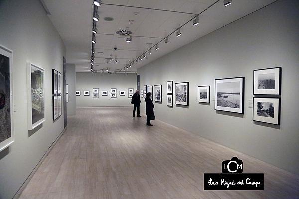 Fotógrafo profesional madrid