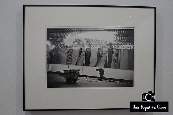 Exposición de Joel Meyerowitz