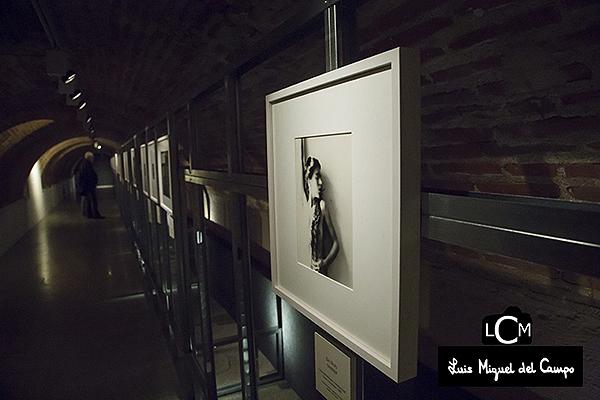 Exposición de Francesca Woodman