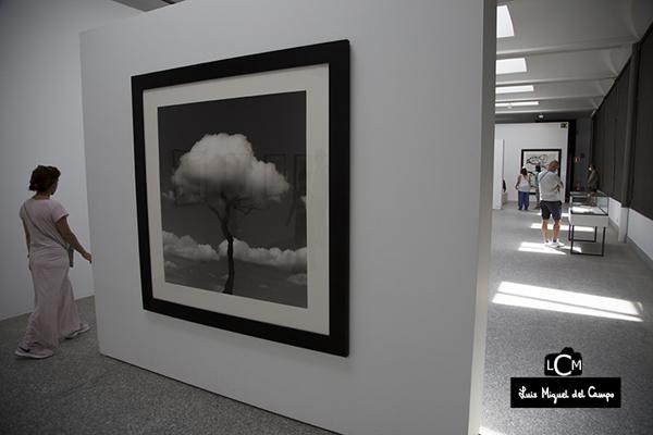 Entrada a la exposición de Chema Madoz