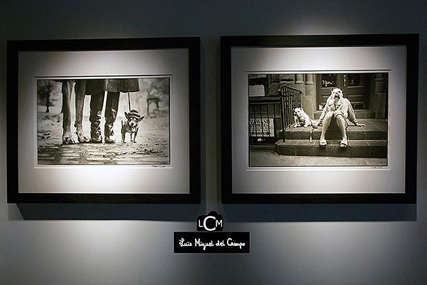 Fotografías de perros más célebres de Elliott Erwitt