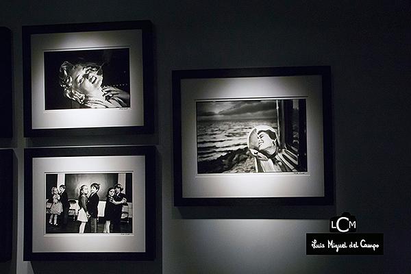 Imágenes icónicas de Elliott Erwitt