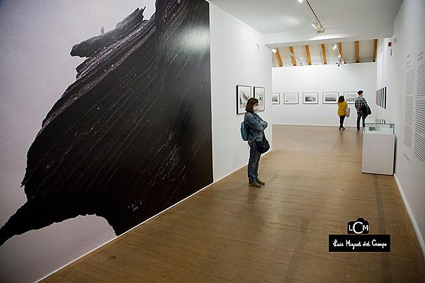 Entrada a la exposición de Adriana Lestido
