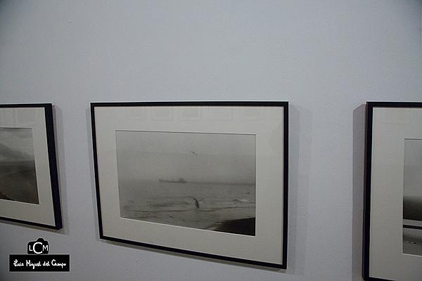Fotografía de Adriana Lestido de su serie Antártida negra