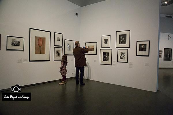 Vista de la exposición en Centrocentro