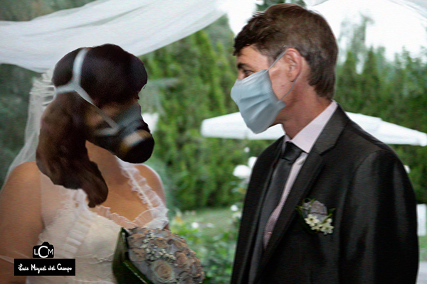 Fotografía de boda pandémica barata