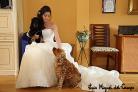 Fotógrafo de bodas en Madrid